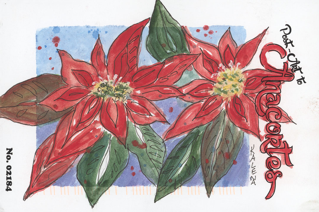 Two poinsettias on a blue background with colored speckles.