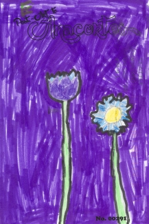 Two flowers on a purple background.